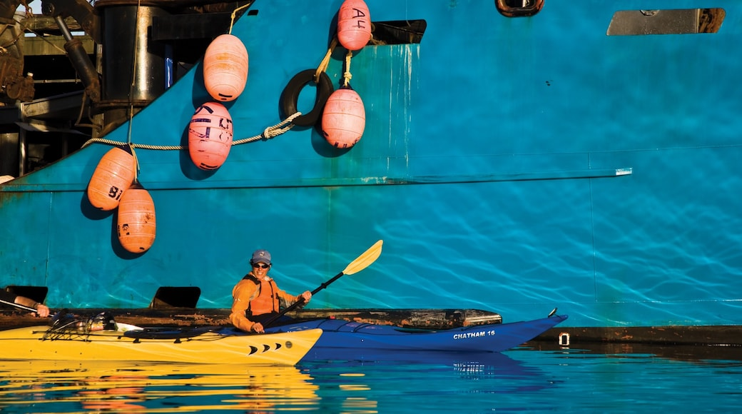 Kodiak Island featuring kayaking or canoeing as well as an individual male