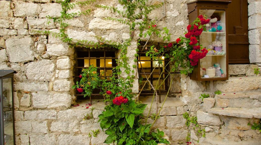 Provence - Alpes - Côte d\'Azur mettant en vedette fleurs