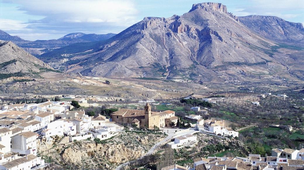 Almería ofreciendo un pueblo, situaciones tranquilas y montañas