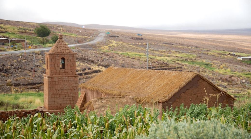 Región de Antofagasta mit einem Farmland, Geschichtliches und ruhige Szenerie