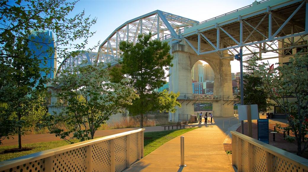 Cumberland Park montrant pont, coucher de soleil et ville