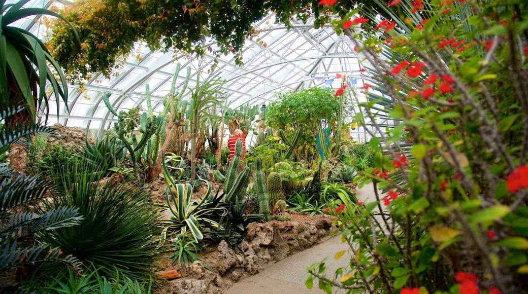 크론 온실 을 보여주는 정원 과 야생화