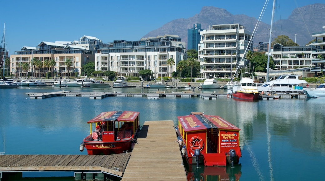 Victoria and Alfred Waterfront showing a marina