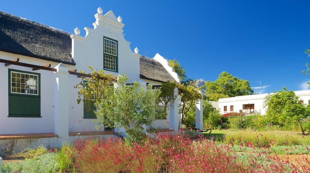 Stellenbosch presenterar ett hus och blommor