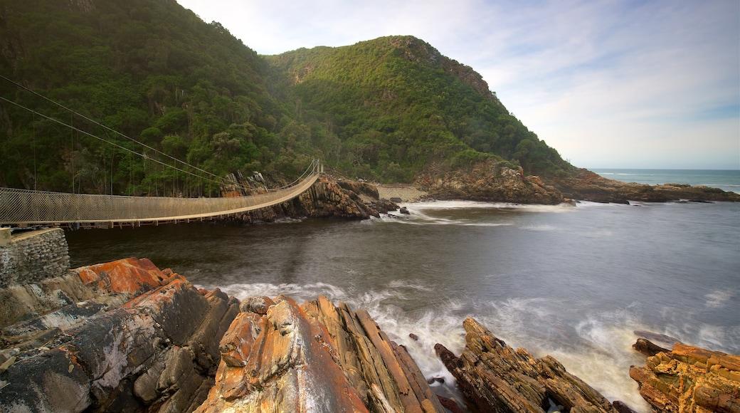 Tsitsikamma National Park das einen Brücke und See oder Wasserstelle