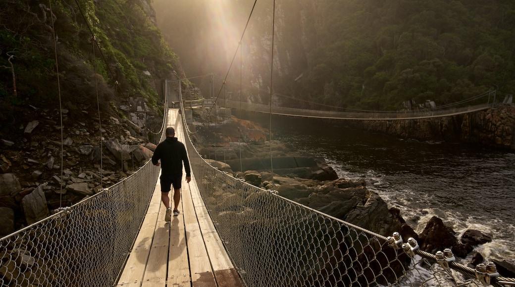 Tsitsikamma National Park das einen Brücke sowie einzelner Mann