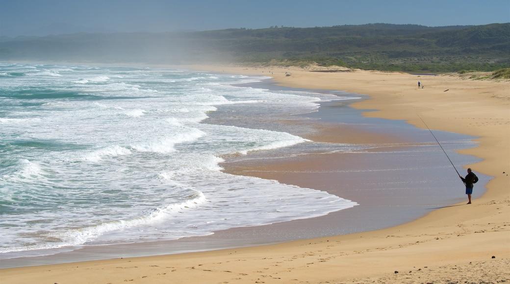 Riserva naturale e marina di Goukamma caratteristiche di vista della costa, surf e pesca