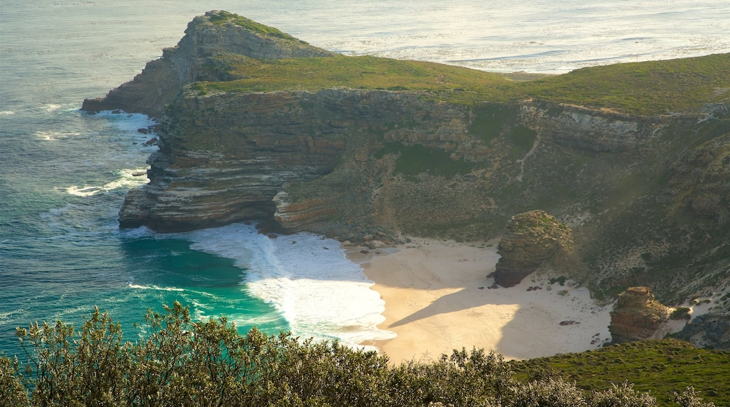 Cape Point which includes rocky coastline and a beach