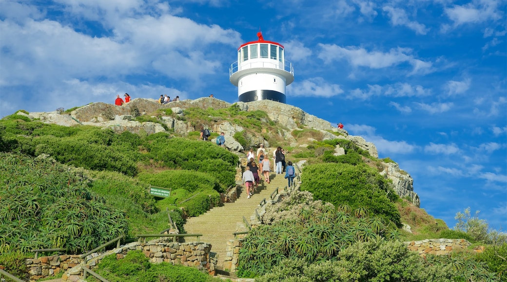 Cape Point showing a lighthouse as well as a small group of people