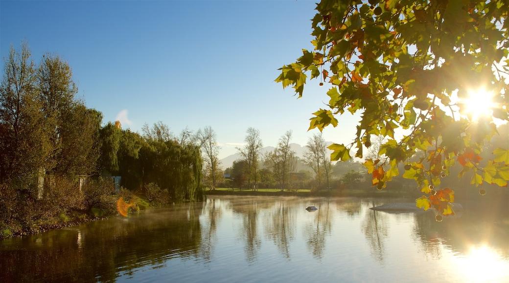 Vingården Spier som inkluderar en sjö eller ett vattenhål och höstfärger
