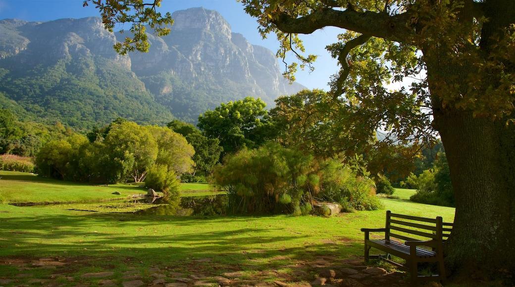 Kirstenbosch National Botanical Garden which includes a park