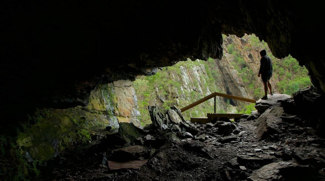 Tsitsikamma National Park das einen Höhlen sowie einzelner Mann