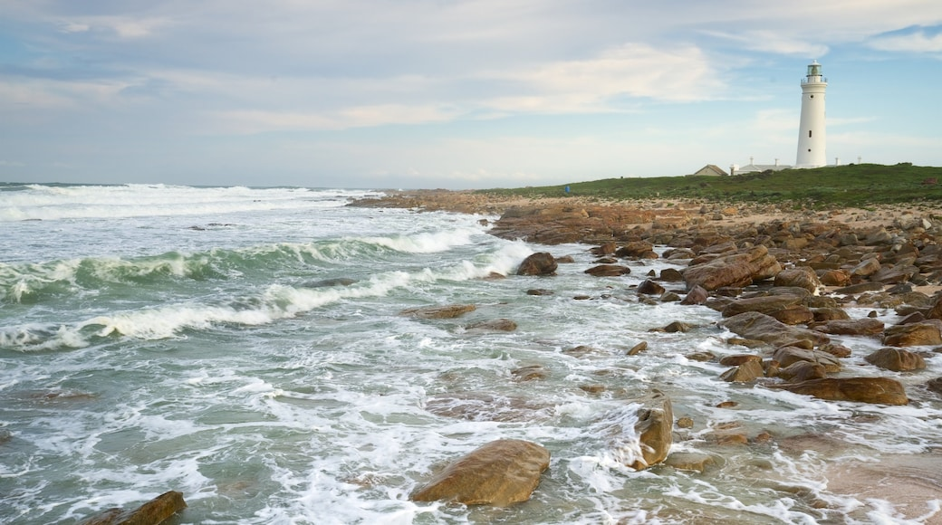 Seal Point Lighthouse showing general coastal views, a lighthouse and rocky coastline