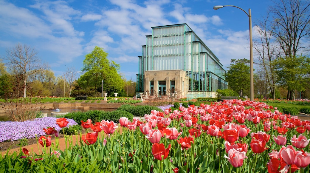 Forest Park showing flowers, a garden and modern architecture