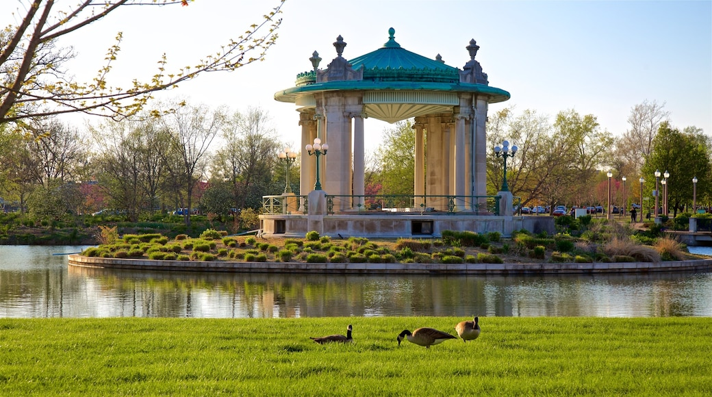 Forest Park which includes a pond, a park and bird life