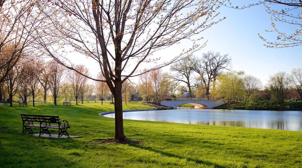 Forest Park featuring a bridge, a pond and a garden