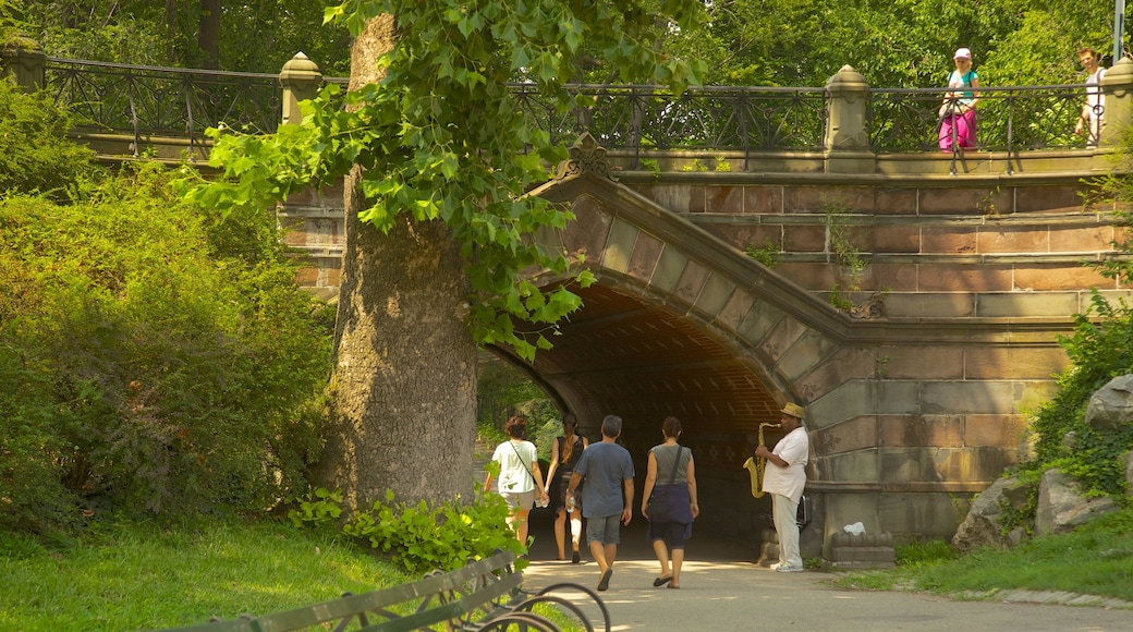 Central Park which includes music, a bridge and a garden