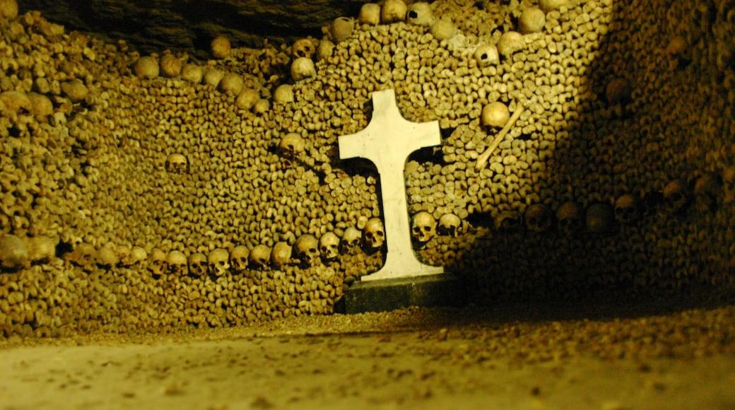 Catacombes de Paris mettant en vedette mémorial et vues intérieures