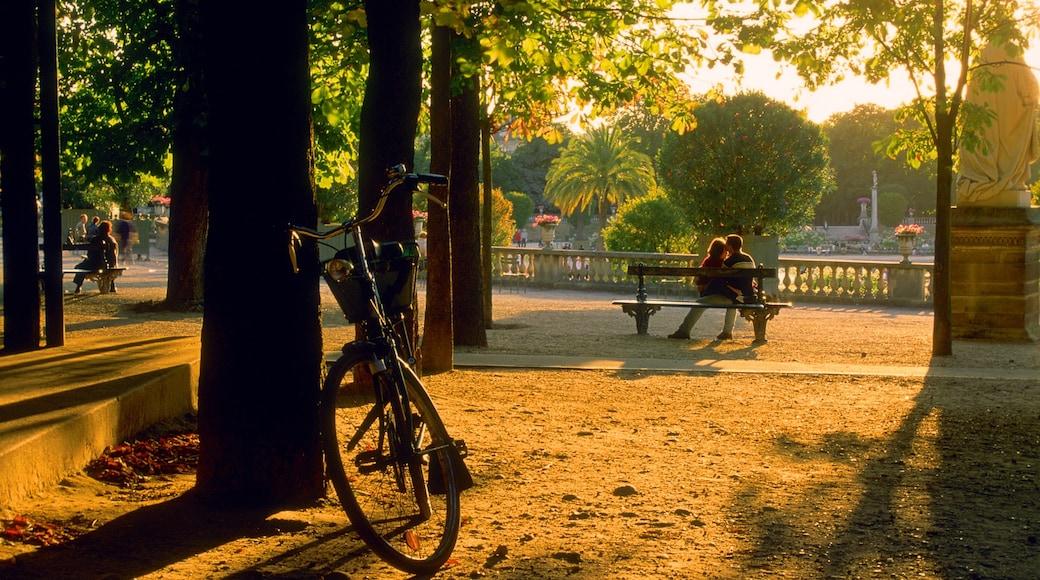 Luxembourgträdgården som visar en solnedgång och en trädgård såväl som ett par