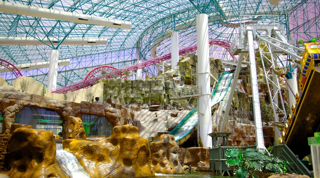 Adventuredome Theme Park featuring a park, rides and interior views