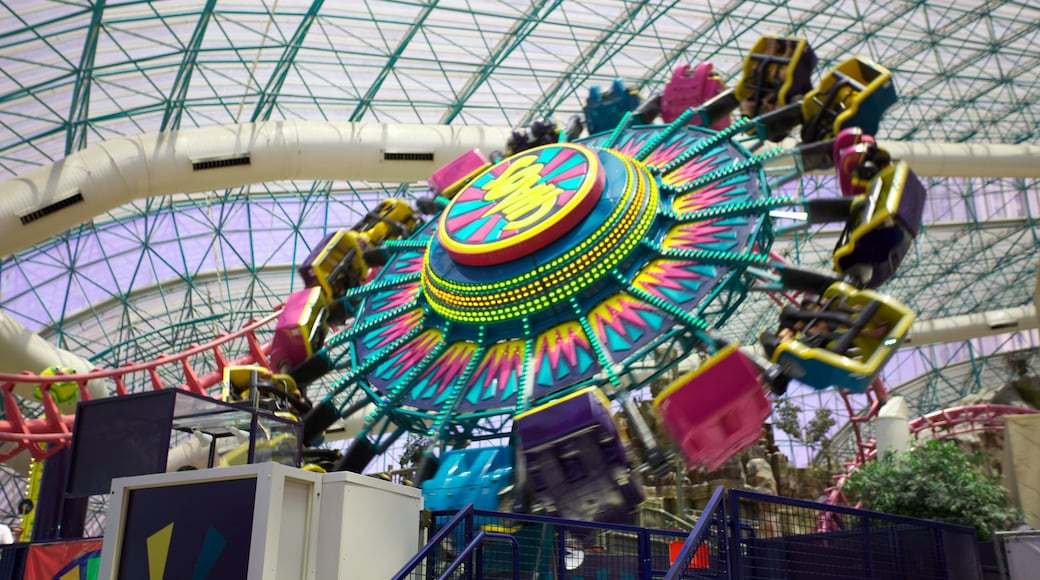 Adventuredome Theme Park which includes rides, interior views and a park