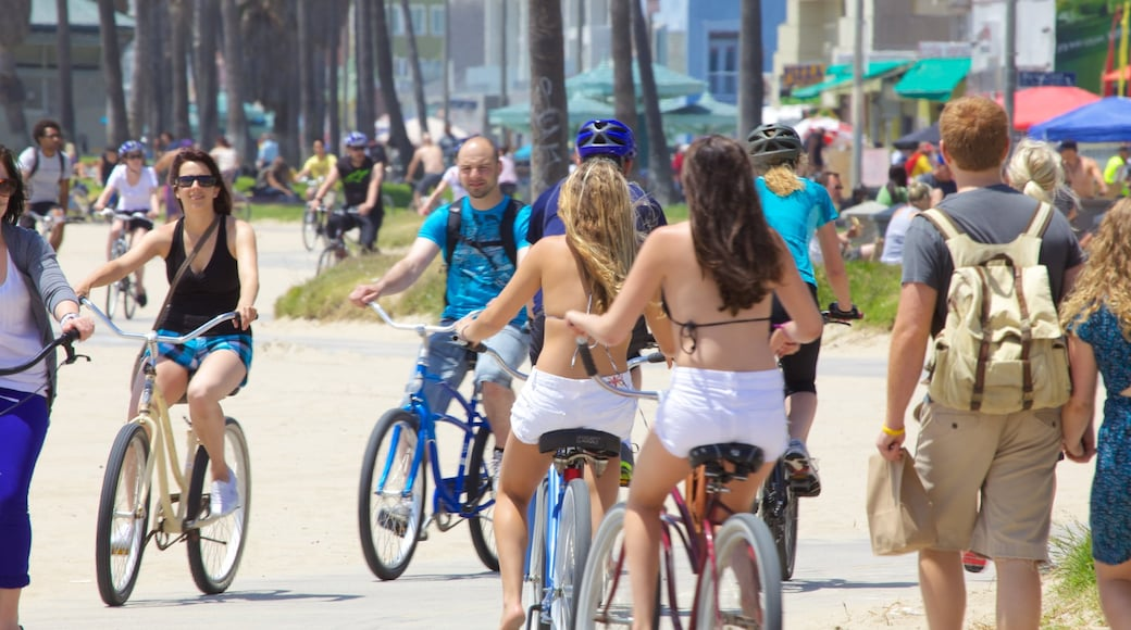 Venice Beach featuring street scenes and cycling as well as a large group of people