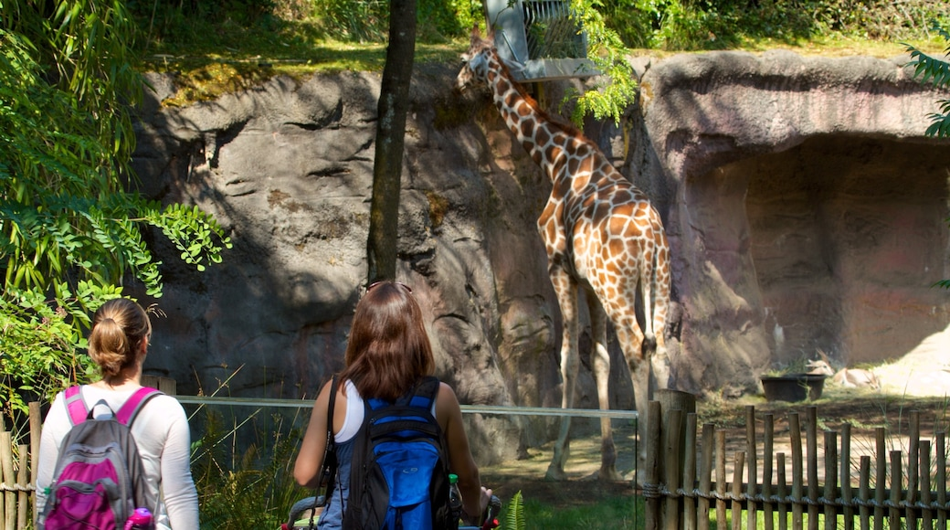 Oregon Zoo featuring land animals and zoo animals as well as children