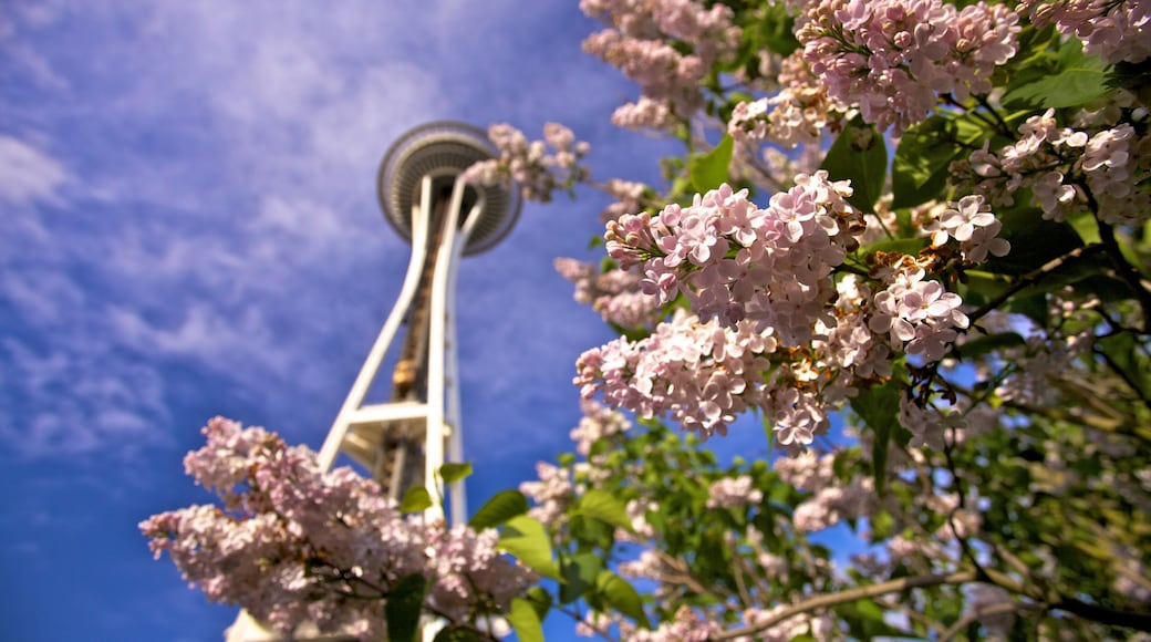 Space Needle showing modern architecture, wildflowers and flowers