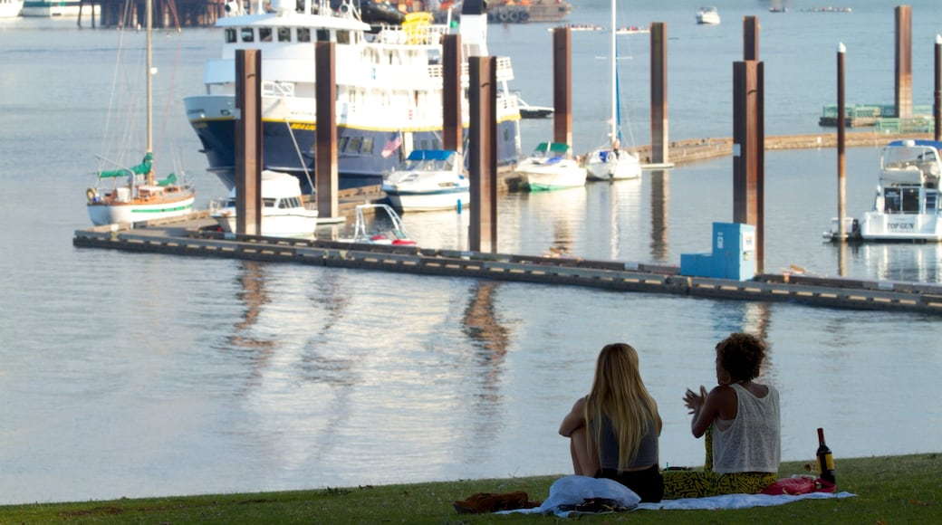 Downtown Portland featuring boating, picnicking and a bay or harbour