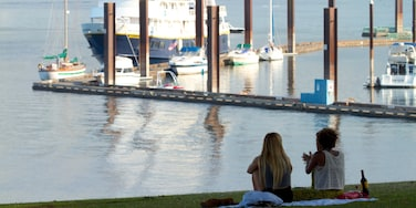 Downtown Portland - South Waterfront which includes boating, a bay or harbour and picnicking