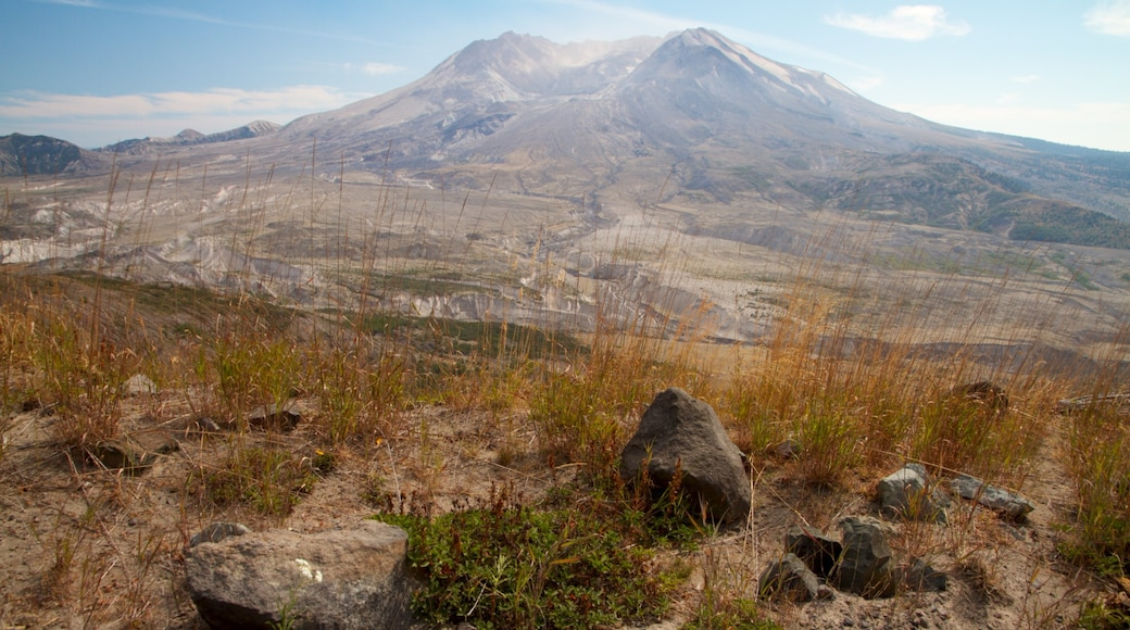 Mount St. Helens showing mountains and landscape views