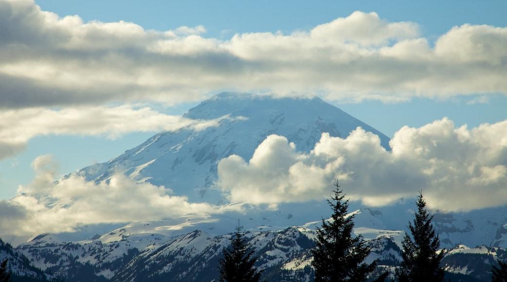 Mount Rainier National Park featuring snow, landscape views and mountains