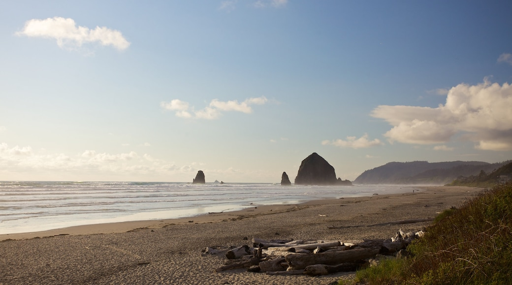 Cannon Beach which includes a beach and landscape views