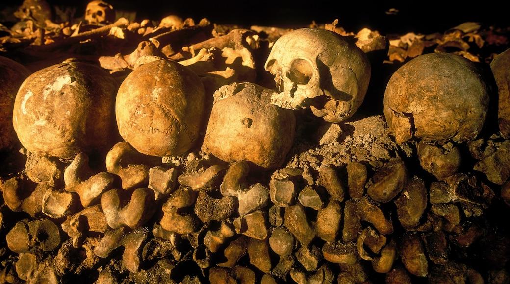Catacombes de Paris qui includes patrimoine historique