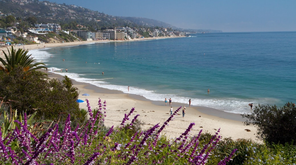 Laguna Beach which includes flowers, landscape views and a coastal town