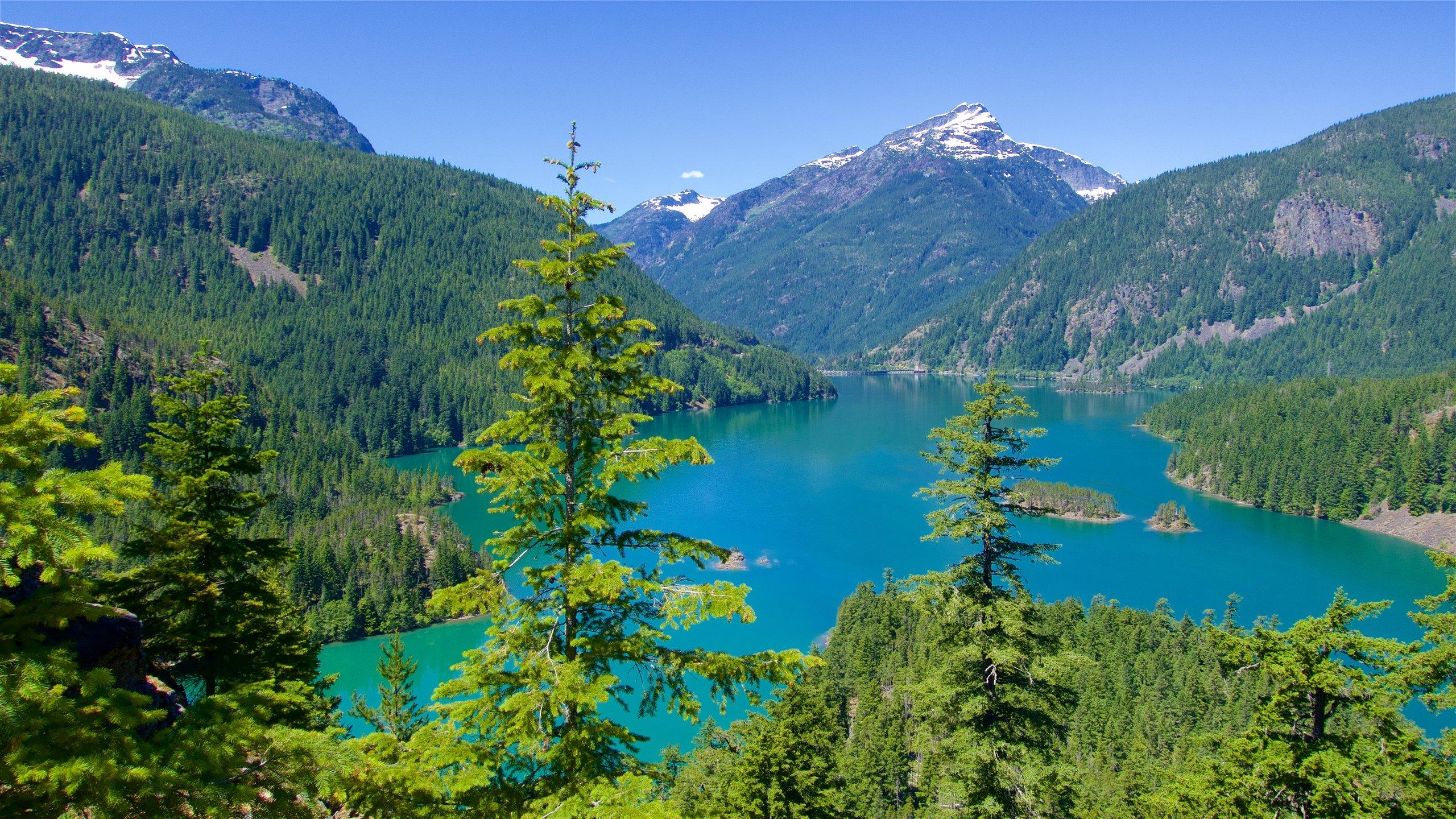 Park Narodowy North Cascades, Waszyngton, Stany Zjednoczone