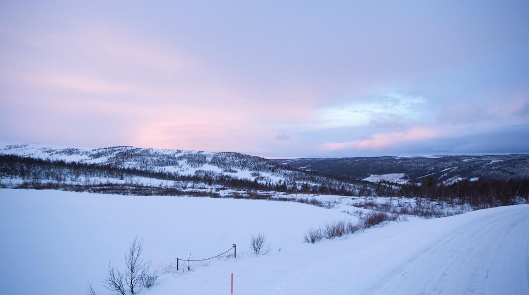 Rjukan welches beinhaltet ruhige Szenerie, Landschaften und Schnee