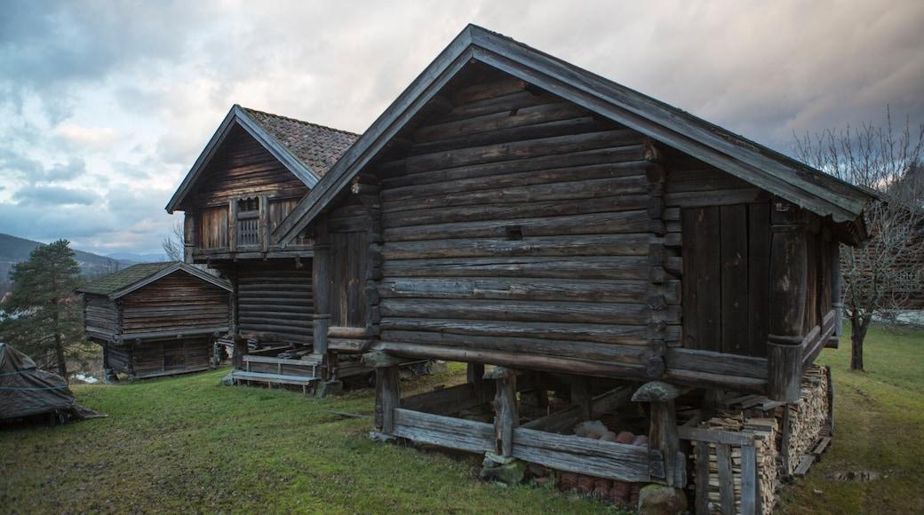 Notodden fasiliteter samt historisk arkitektur og hus