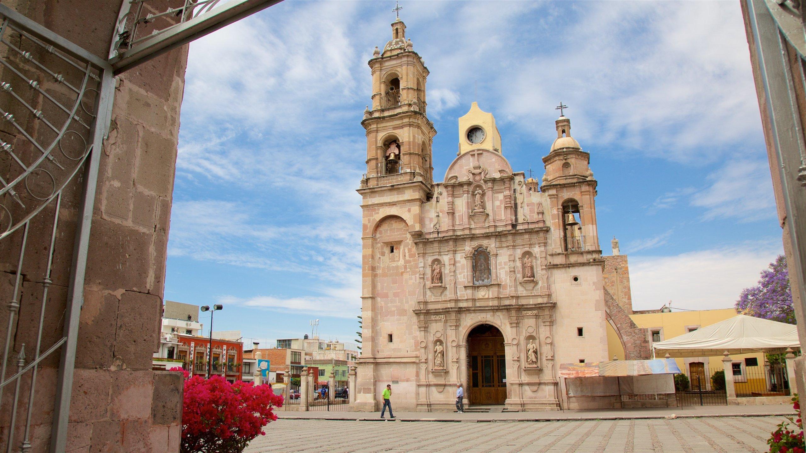 Top 10 Pet Friendly Hotels In Aguascalientes $20: Dog & Cat Friendly ...
