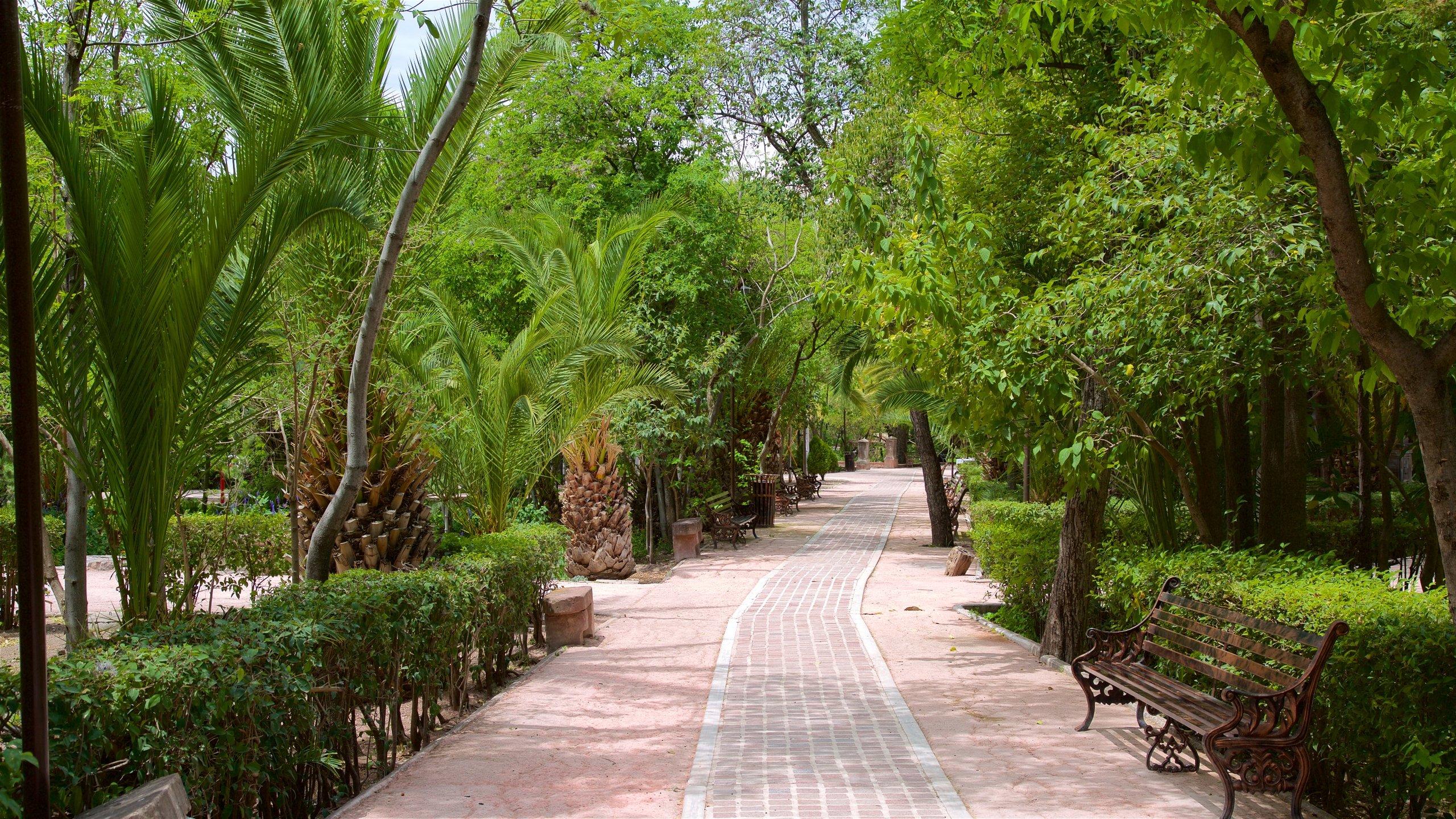 Parque Juárez, San Miguel de Allende, Guanajuato, Mexico