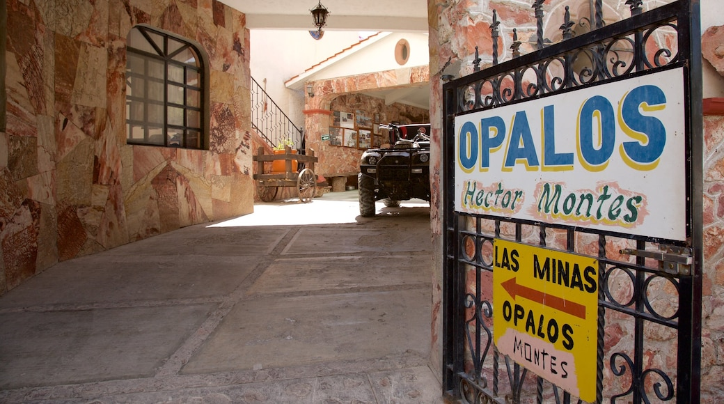 Tequisquiapan Opal Mine which includes signage