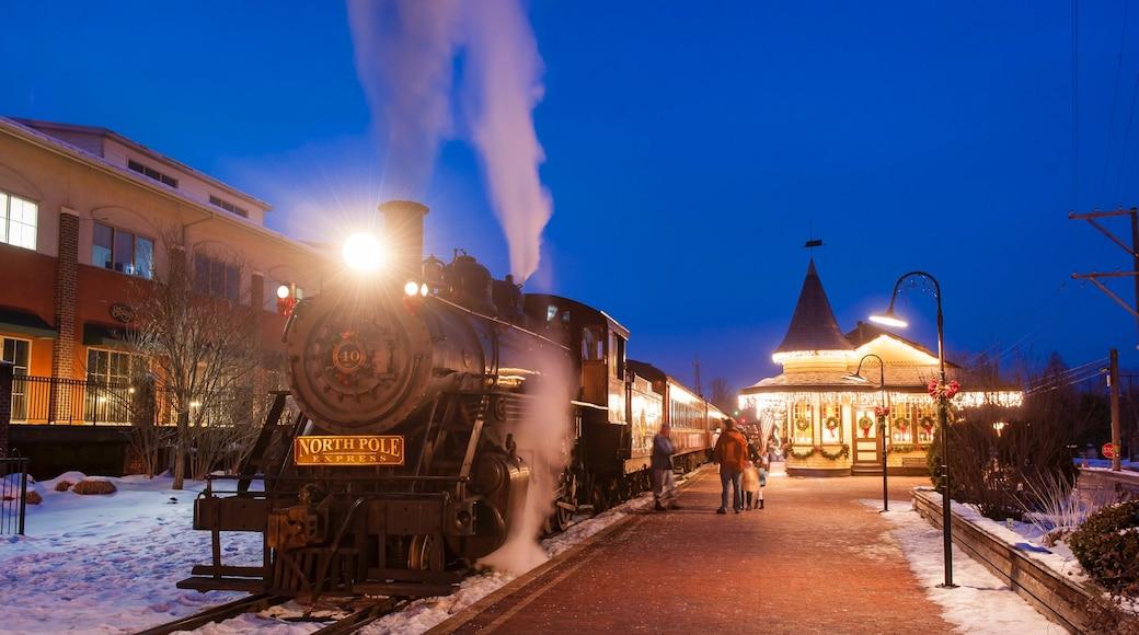 New Hope que inclui itens de ferrovia, cenas noturnas e neve