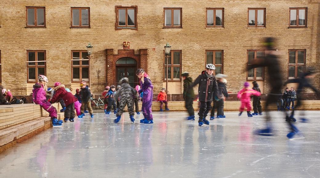 Skive das einen Eislaufen sowie Kinder