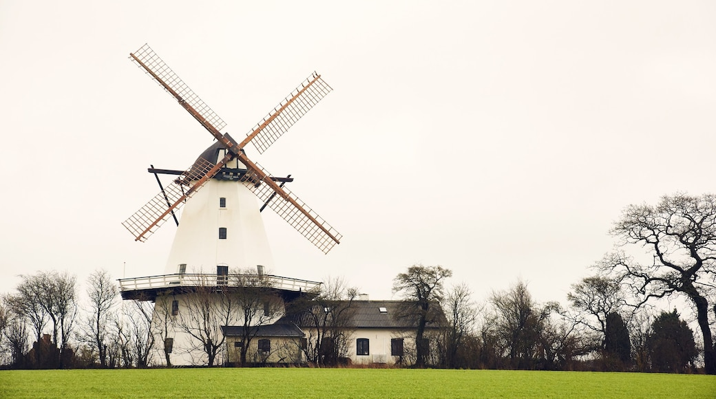 Haderslev showing a park and a windmill