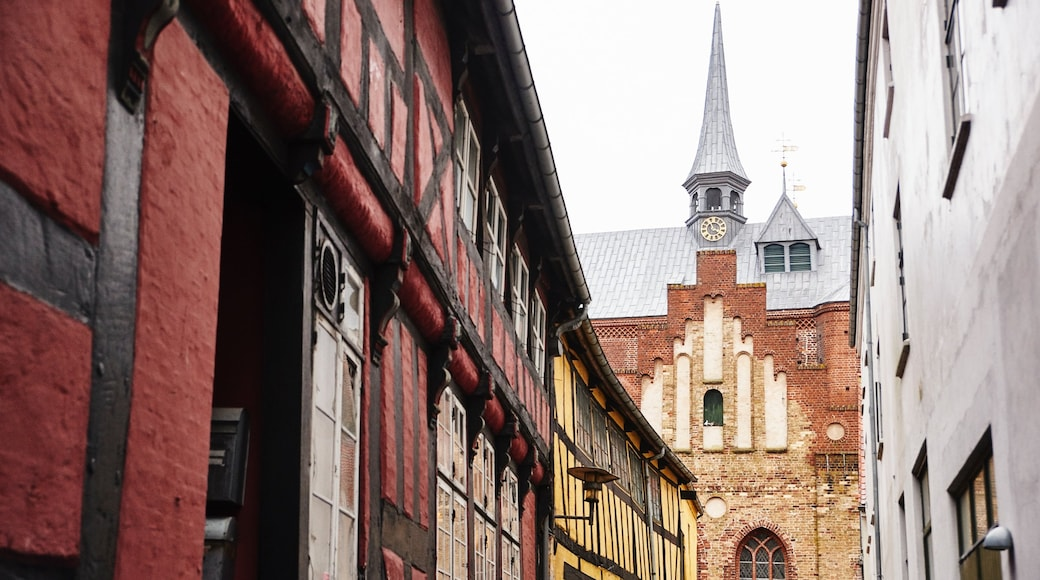 Haderslev showing heritage architecture