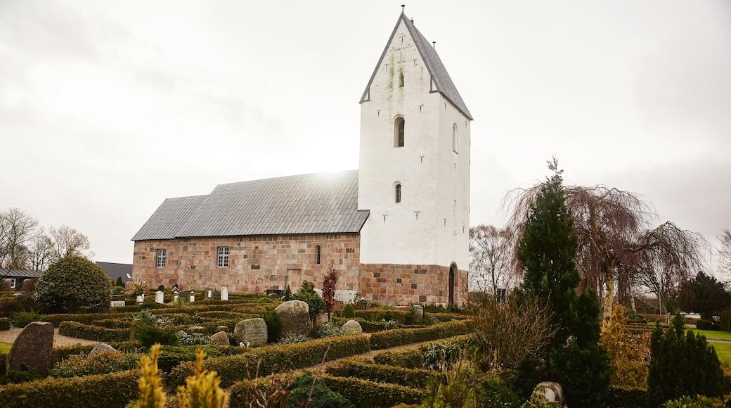 Slagelse joka esittää puutarha ja kirkko tai katedraali
