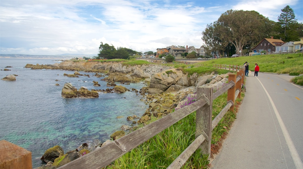 Pacific Grove featuring rugged coastline