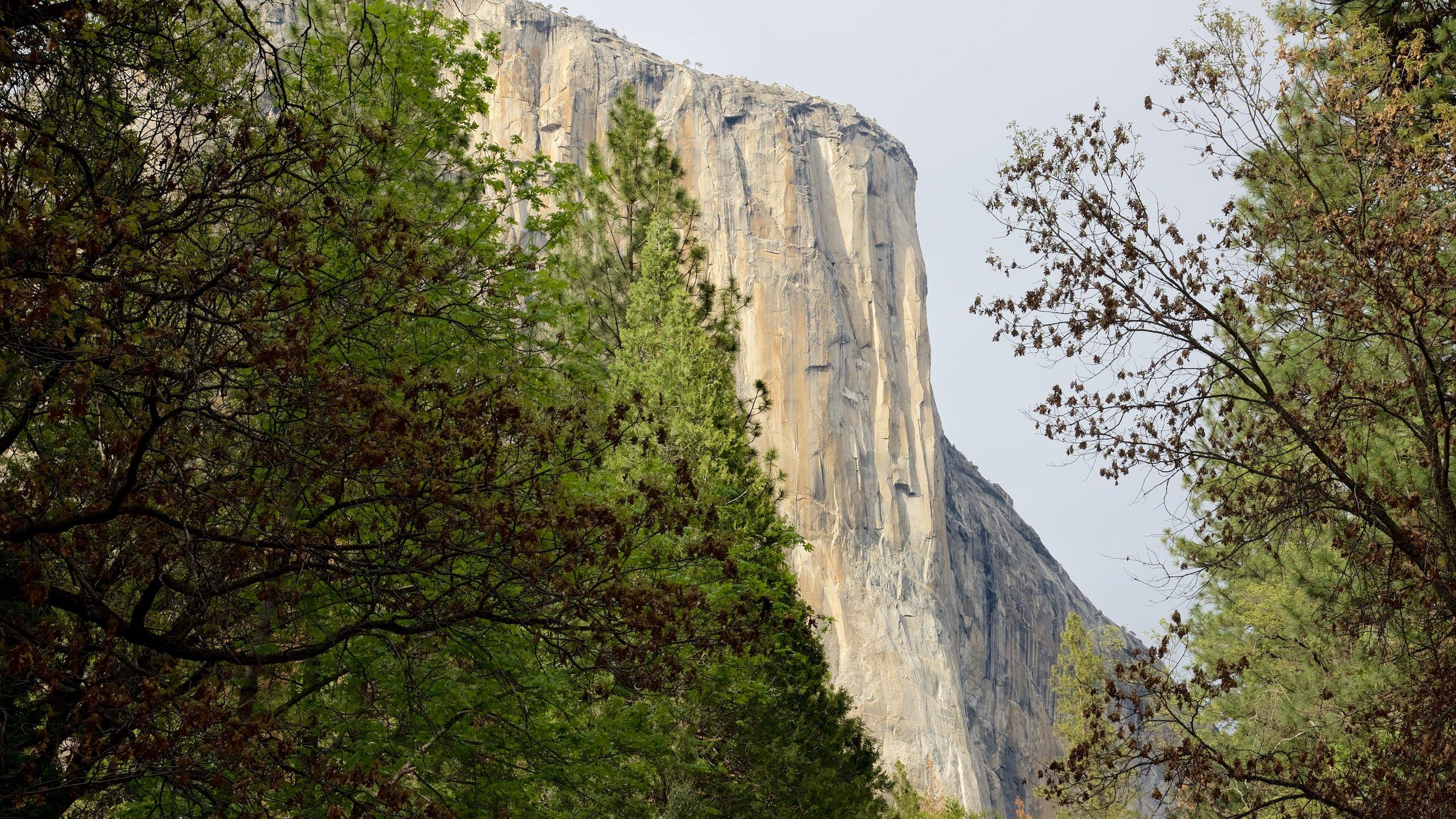 Veja a grandiosidade dos picos de granito formados por geleiras do Vale de Yosemite enquanto observa as incríveis formações e o cenário para escalada.