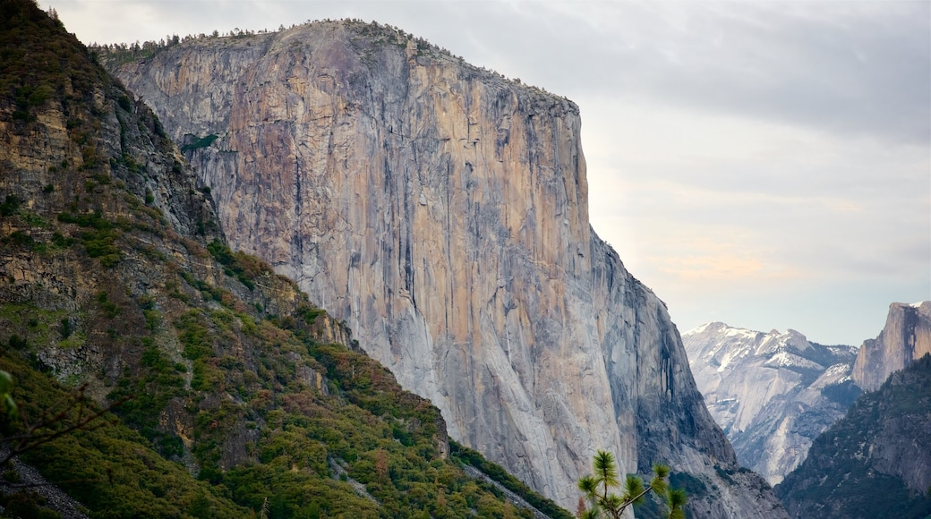 El Capitan showing a gorge or canyon and mountains