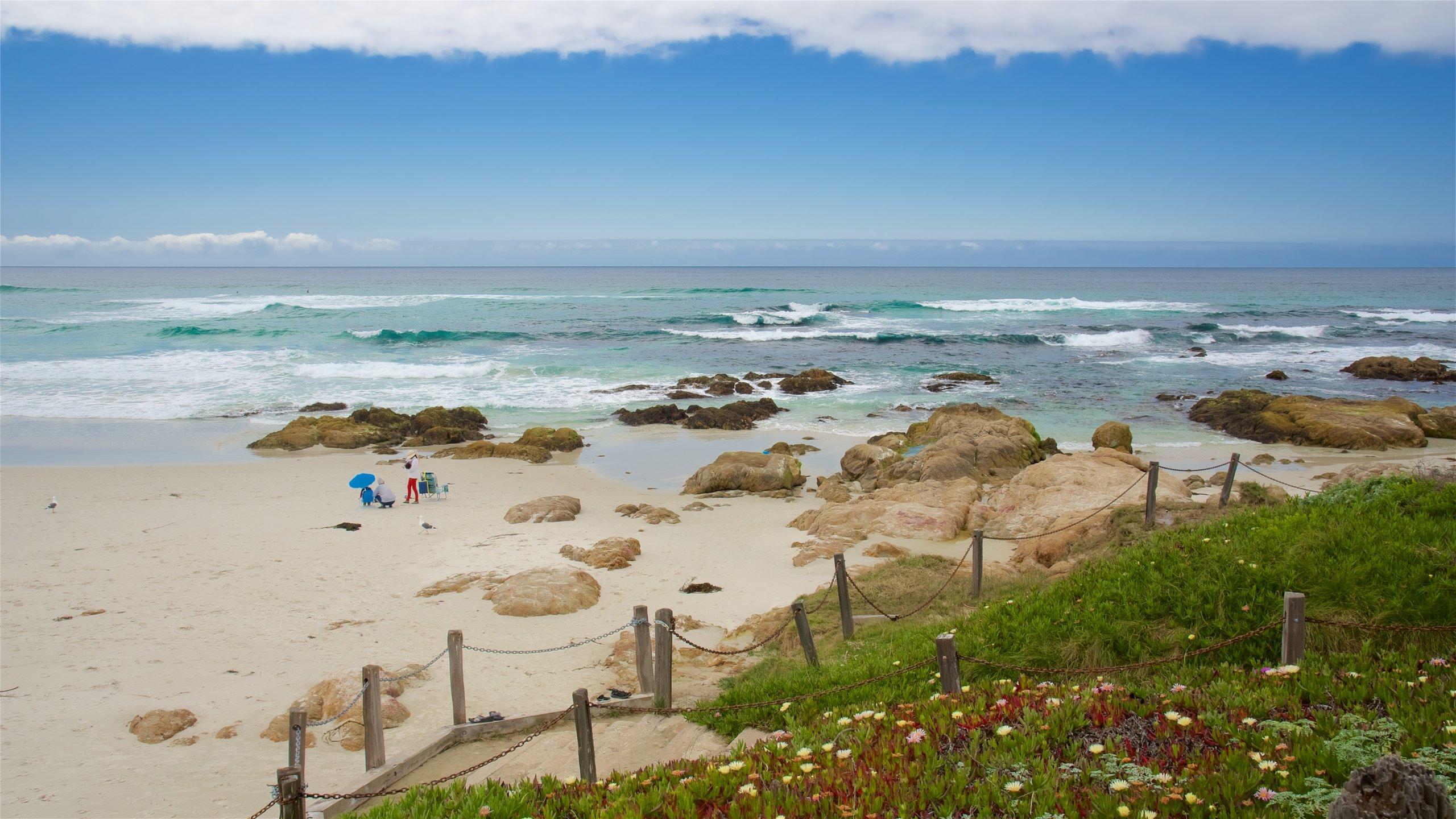 Asilomar State Beach, Pebble Beach, California, United States of America
